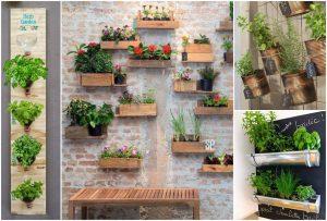 Entenda como montar hortas verticais próprias para apartamentos pequenos