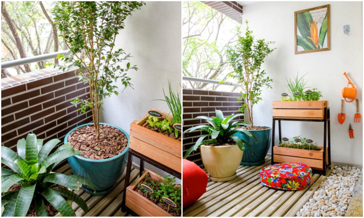Temperos caseiros: saiba como cultivar em seu apartamento
